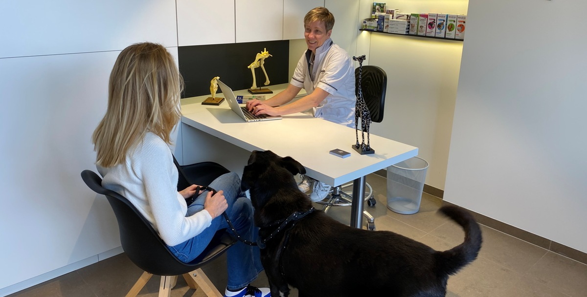 gesprek acupuncturist dierenarts Debyser
