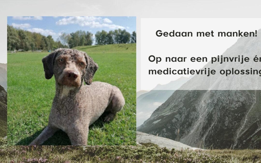 Dierenarts Debyser behandel honden die manken uit Oostende